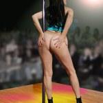 Pole dancer 7 — Stock Photo #4546370
